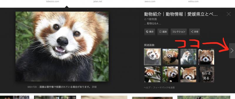 グーグル画像検索画面