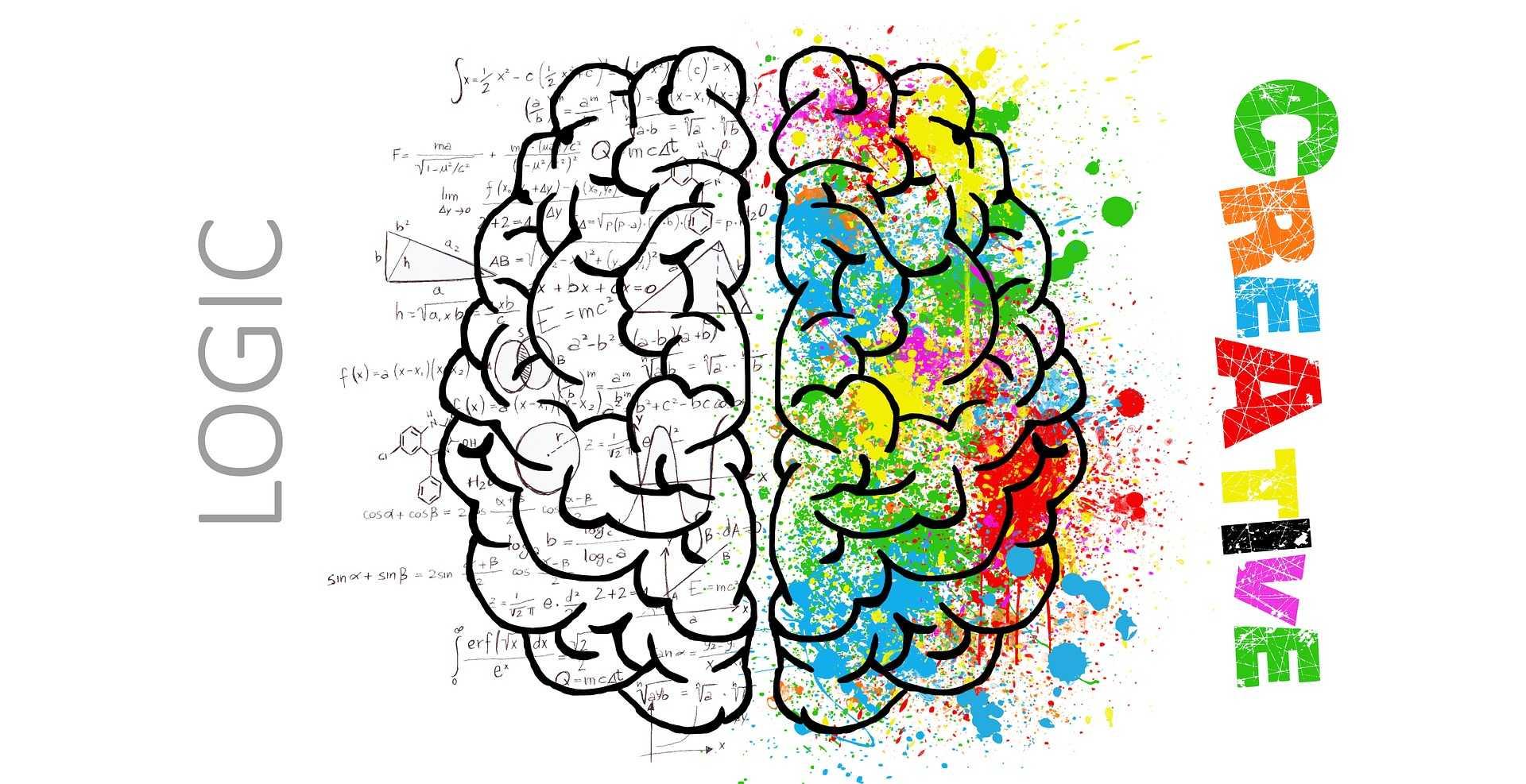 右脳と左脳のイラスト